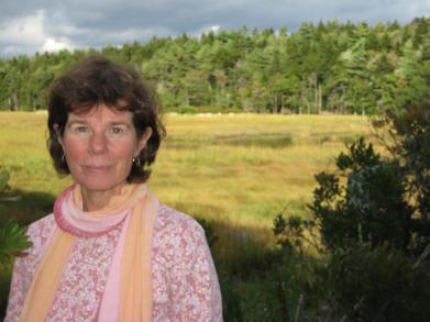 Meg Tipper