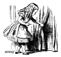 Alice finding door