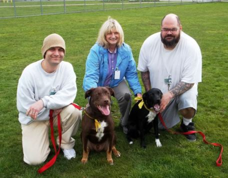 June Cotner, Dogs, and Trainers