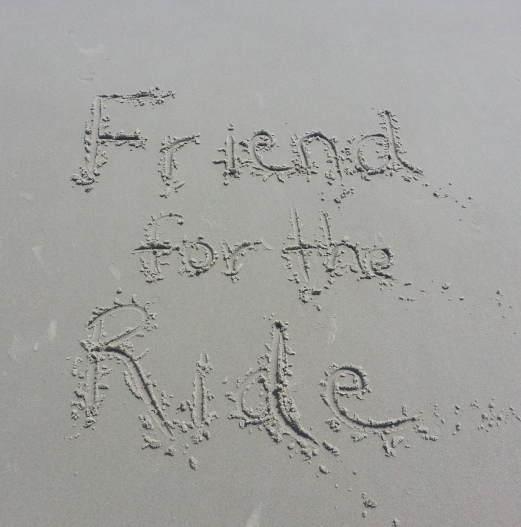 Friend for the Ride in the Sand