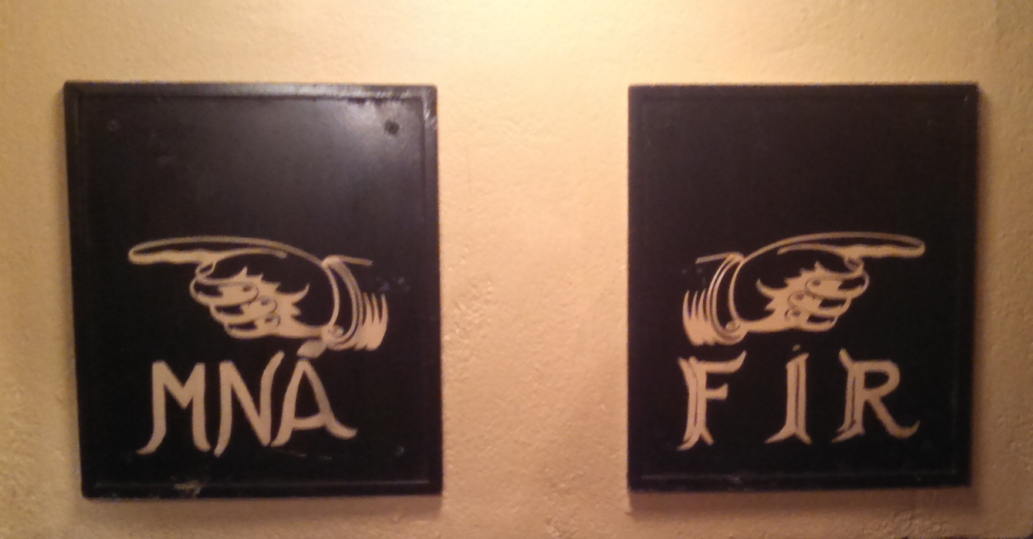 Bathroom Signs Ireland the ladies room door art series: part six | friend for the ride