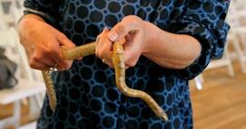Snake in Hand