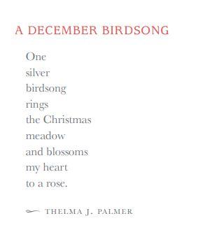 December Birdsong