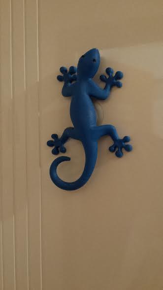 ghecko
